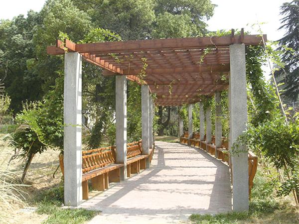江苏省委党校室外园林绿化项目