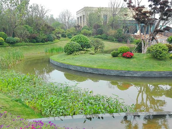国际生态新城景观湖水质净化与生态修复项目