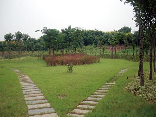 竹林增压站室外景观绿化项目