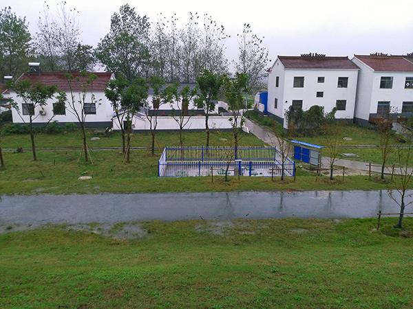 永宁街道联合社区共兴组农村生活污水处理项目