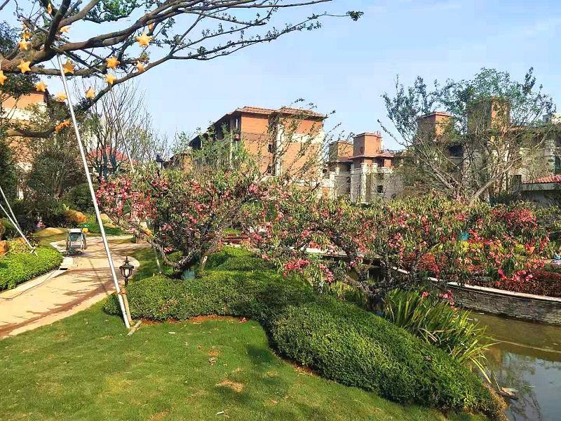 南京恒大林溪郡园建设景观工程