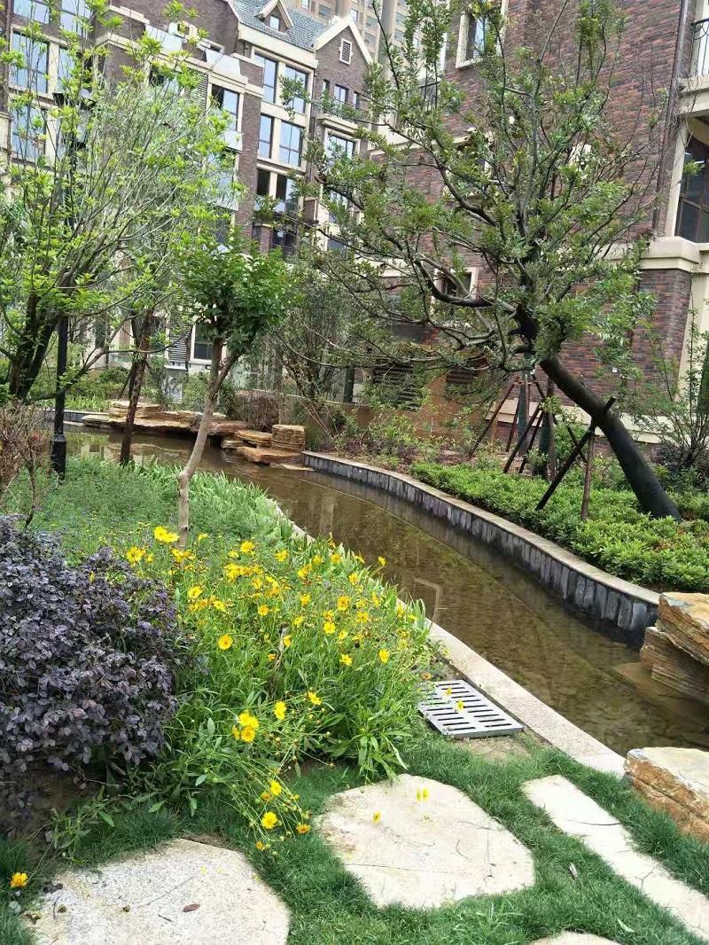 徐州雨润新城景观绿化项目
